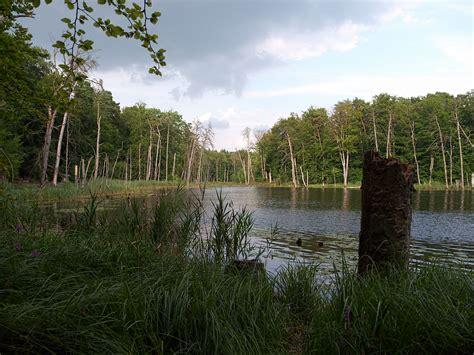 im einklang mit der natur im einklang mit der natur foto bild natur see landschaft bilder auf fotocommunity