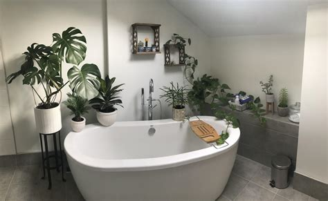urban jungle bathroom finally starting