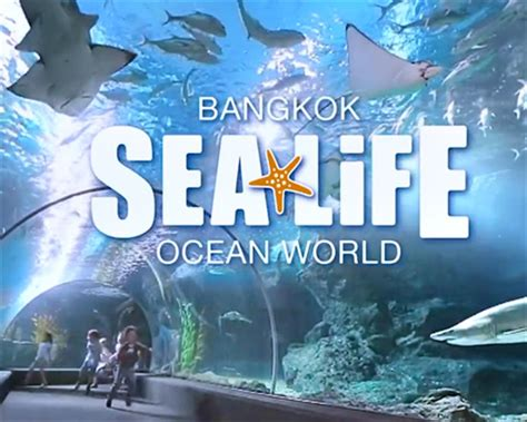 Sea Life Bangkok Ocean World Thailand Bangkok Show And Ticket