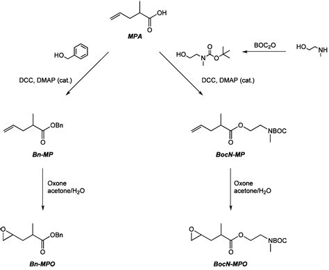 molecules  full text cyclic comonomers   synthesis  carboxylic acid  amine