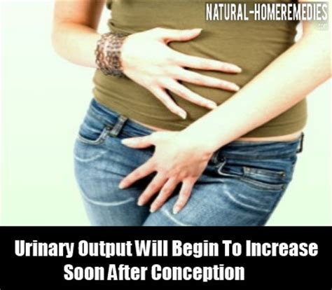 top  symptoms  conception top  early pregnancy