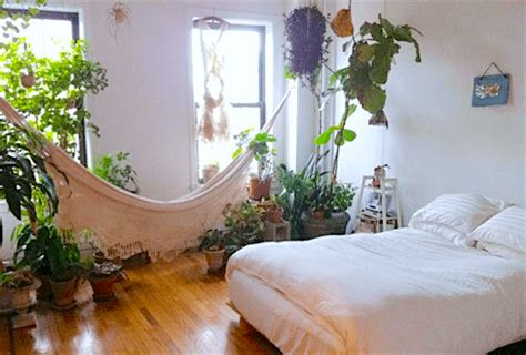 Bedroom Plants For Insomnia by 10 Plants For Your Bedroom That Will Improve Sleep Quality