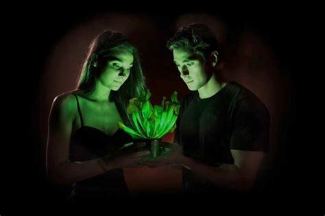 Pflanzen Die Im Dunkeln Leuchten by Durch Genmanipulation Weltweit Erste Leuchtende Pflanze