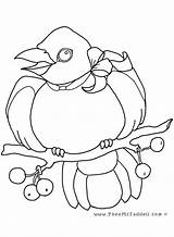 Coloring Pages Diana Princess Crow Pheemcfaddell Little Getcolorings sketch template