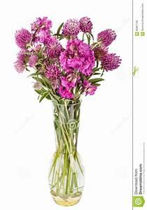Beau Bouquet De Fleur : beau bouquet de fleurs sauvages wildflowers dans le vase ~ Dallasstarsshop.com Idées de Décoration