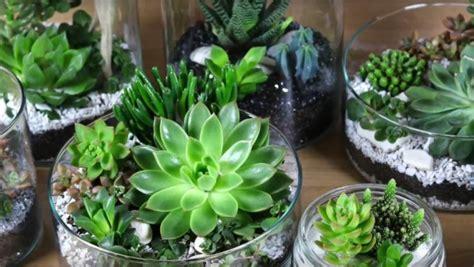 bureau ikea en verre diy vidéo décoration de succulente ikea bidouilles ikea