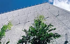 Plantes Grimpantes Mur : support de plantes grimpantes greencable corfil green ~ Melissatoandfro.com Idées de Décoration