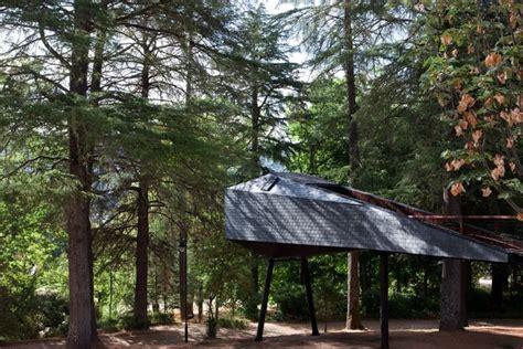 tree snake houses   pedras salgadas eco resort