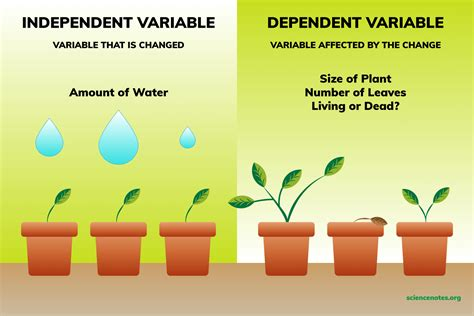 Independent and Dependent Variables Examples