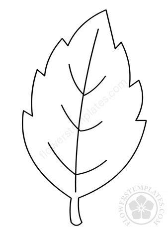 printable rose leaf outline flowers templates