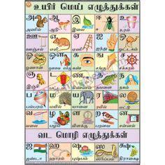 tamil alphabet chart alphabet charts letters  kids