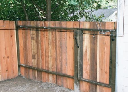 cat barrier catcluez review four cat barrier and fence