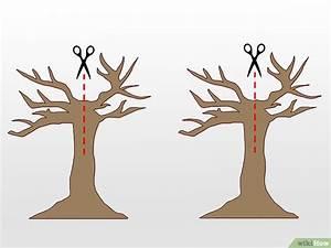 5 formas de hacer un árbol de papel para niños
