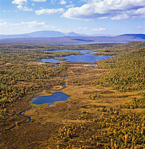 lapland landscapes summer fall bargajaure in
