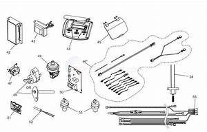 Jandy Jxi Series Gas Heater Electrical System Components