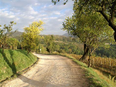 Parco Regionale dei Colli Euganei: A piedi: n. 2 ...