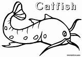 Catfish Coloring Pages Drawing Print Floating Getdrawings sketch template