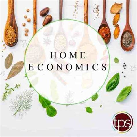 Introduction to Home Economics | ClassNotes.ng
