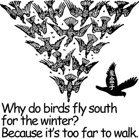 elephantcube blog why do birds fly south for the winter