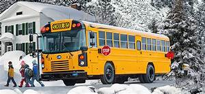 Our Buses