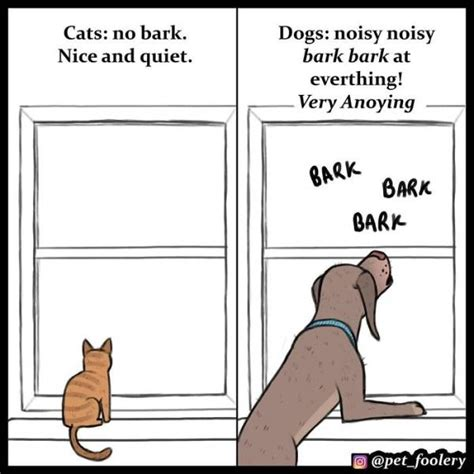 cats dogs better than why reasons then comics hilarious decided comic explaining superior instagram izismile