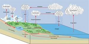 The Drainage Basin Hydrological Cycle
