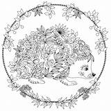 Hedgehog Coloring Adult Colouring Mandala Animal Printable Igel Sheets Adults Mandalas Vk Malvorlagen Ms Zum антистресс Ausmalen Ausmalbilder Colored Visit sketch template