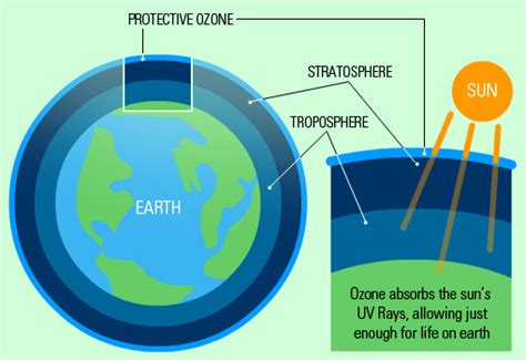 why is ozone an important form of oxygen essay on ozone layer depletion and protection