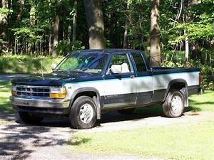 Jake Fye318 1995 Dodge Dakota Regular Cab  U0026 Chassis Specs