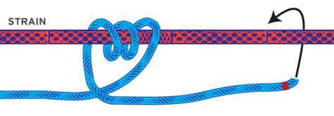 Boat Knot That Doesn T Slip by Gripping Hitches Boat Knots Boatus Magazine