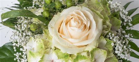 immagini di fiori bianchi immagini mazzi fiori