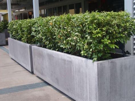 Wall Trough Planter by Le Fioriere Per Esterno Vasi E Fioriere Fioriere
