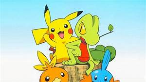 Treecko Torchic Mudkip Pokemon Plush Dolls Images ...