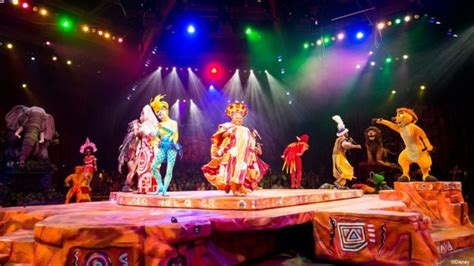 animal kingdom festival   lion king dining packages