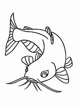 Coloring Pages Catfish Fish Printable Minecraft Print sketch template