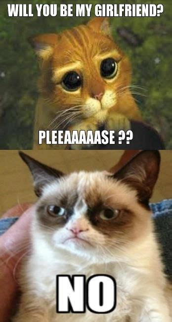 Puss In Boots Meme - pretending to be puss in boots don t like him don t like you either grumpy cat pinterest