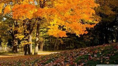 Fall Country Scenes Scene Wallpapersafari
