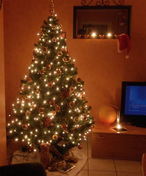 warum der weihnachtsbaum serenas welt benvenuto