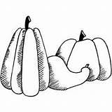 Gourd Coloring Pumpkin Sheet Halloween Koala Bear Freecoloringsheets Sheets sketch template