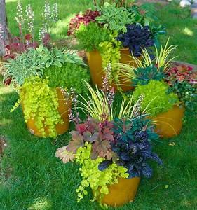 Tulpenzwiebeln Im Topf Pflanzen : pflanzen im herbst tulpenzwiebeln im herbst pflanzen geh ~ Lizthompson.info Haus und Dekorationen
