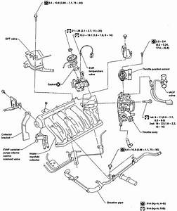 2002 Ford Windstar Belt Tensioner Diagram