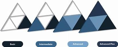 Fuzion Advanced Intermediate Basic Icons Modules