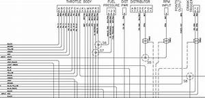 Pioneer Car Wiring Diagram