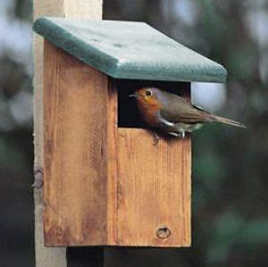 robin nesting box bird house plans birds bird house