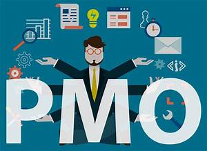 Webinar  5 Levels For Assessing Pmo Maturity In Your