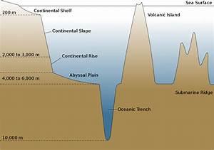 File Oceanic Basin Svg