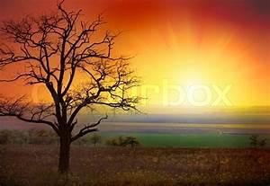 Beautiful landscape and sunrise | Stock Photo | Colourbox