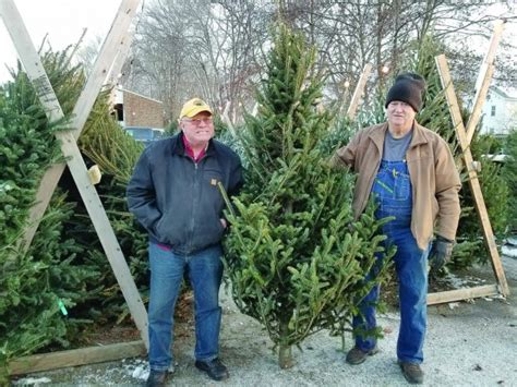 nordmann fir christmas tree home depot after tree sales noble fir tree field with after tree sales