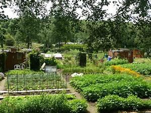 Potager Hors Sol : jardins partag s hors sol nature potager en ville ~ Premium-room.com Idées de Décoration