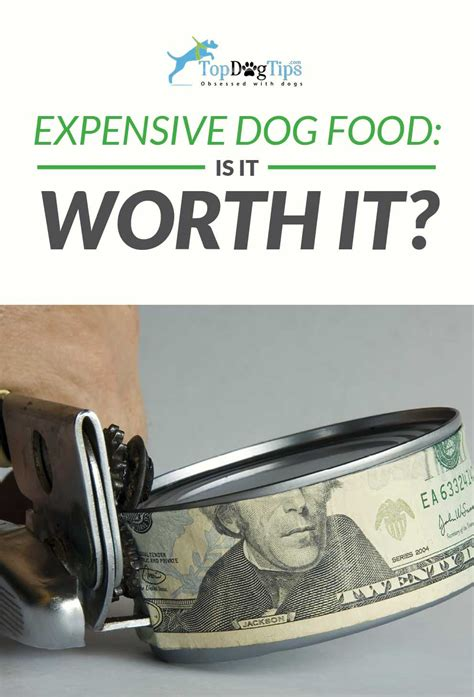 expensive dog food brands   worth  high cost